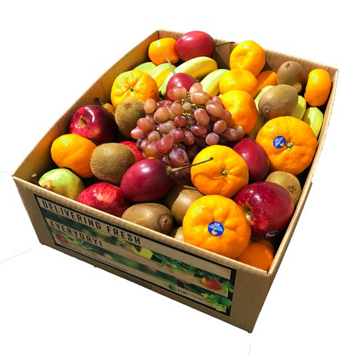 XL Fruit Box